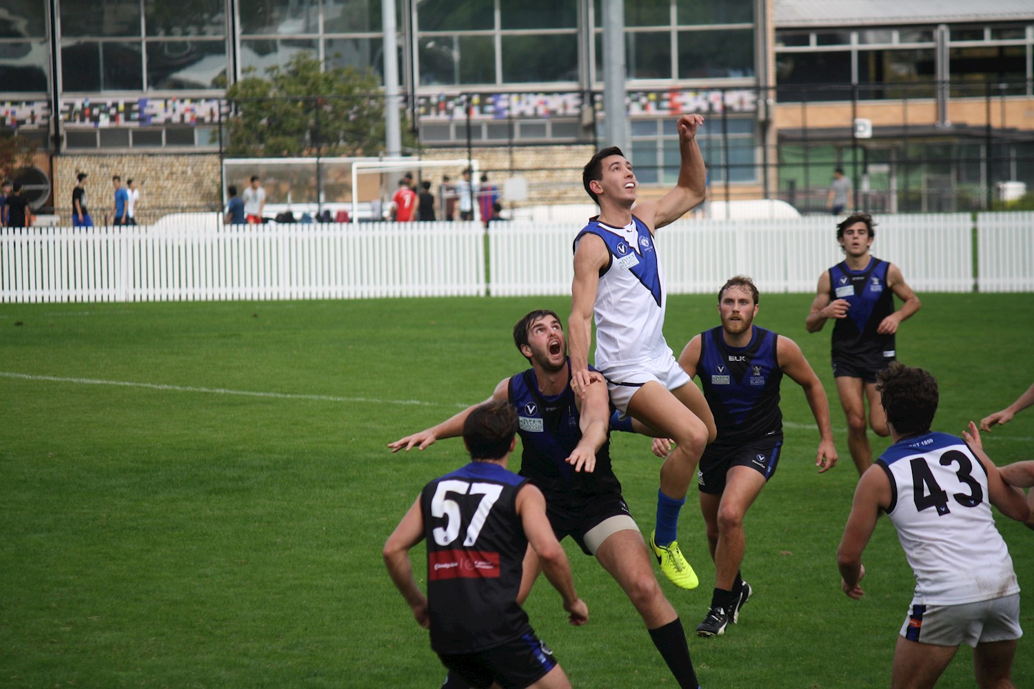 Round 11 Reserves report